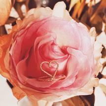 Le temps des roses ... Bon Dimanche à vois tous ♡ ... #padampadamparis #padampadam #coeur #baguecoeur #amour #rose #parismonamour #bague #ring